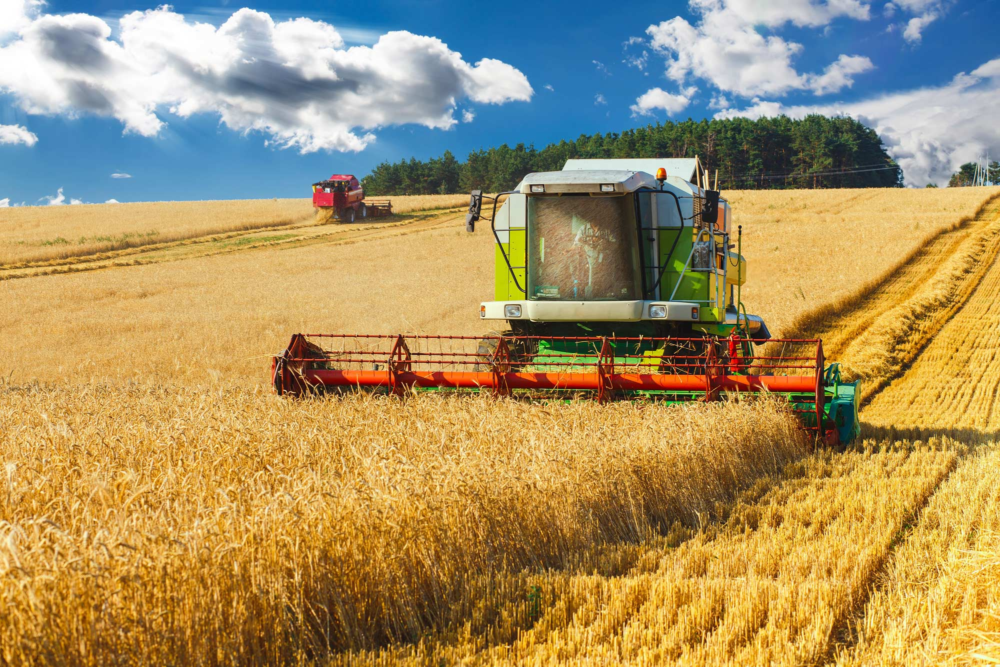 Trading and management software for commodities